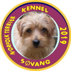 KENNEL SØVANG
